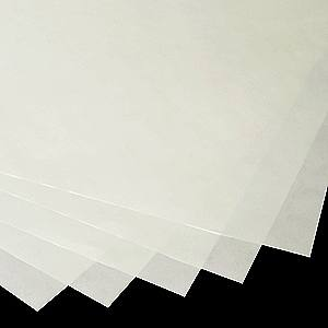 term paper guides